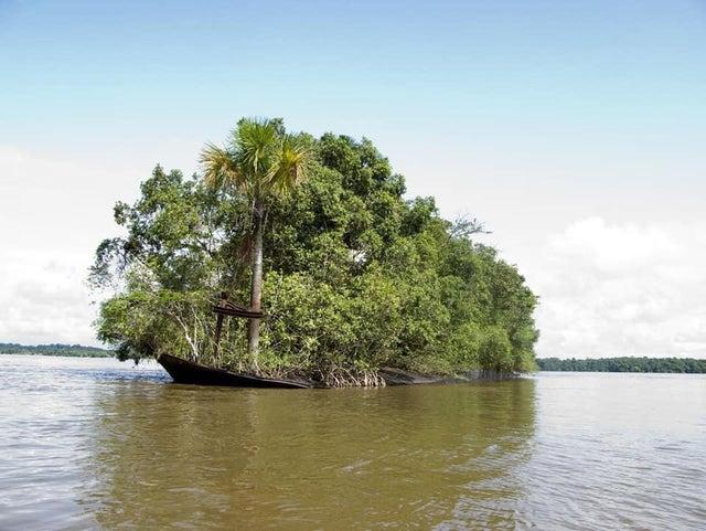 一搜搁浅的船变成了一个小岛