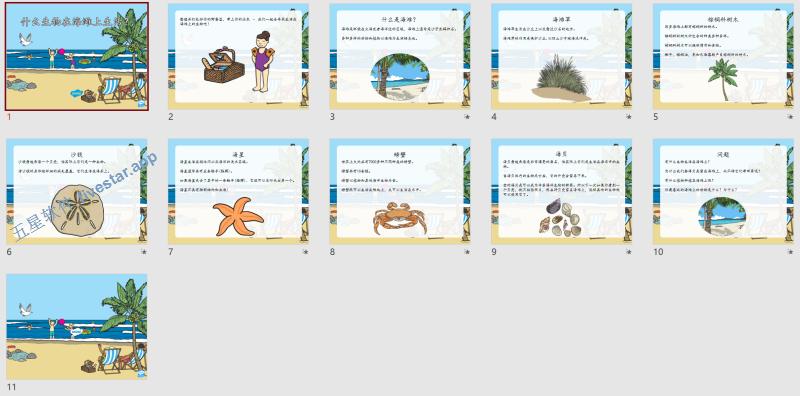 Twinkl-小学高年级-科学-什么生物生活在海滩上?讲解幻灯片