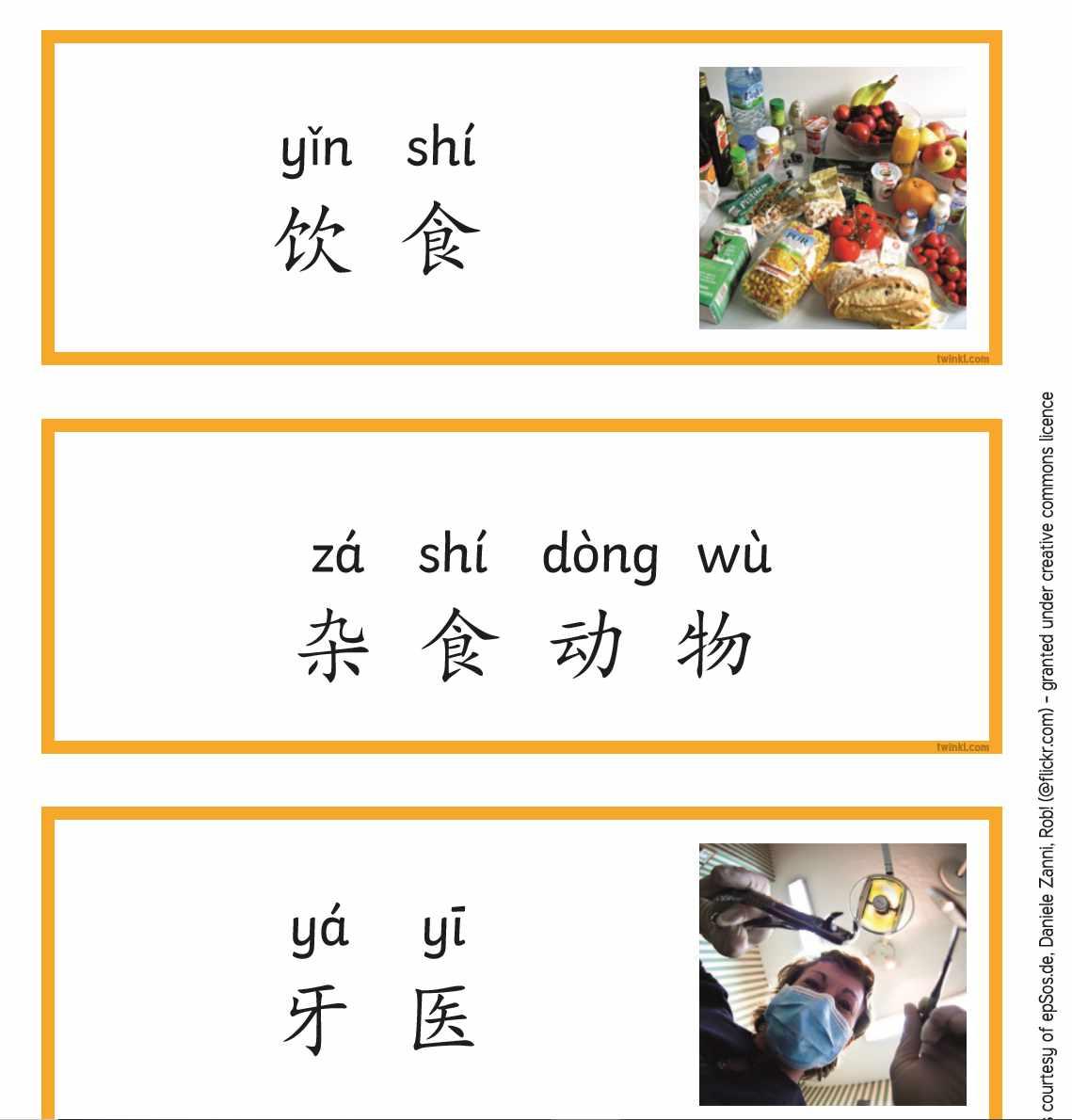 Twinkl-小学高年级-科学-牙齿和营养词汇卡片(拼音)
