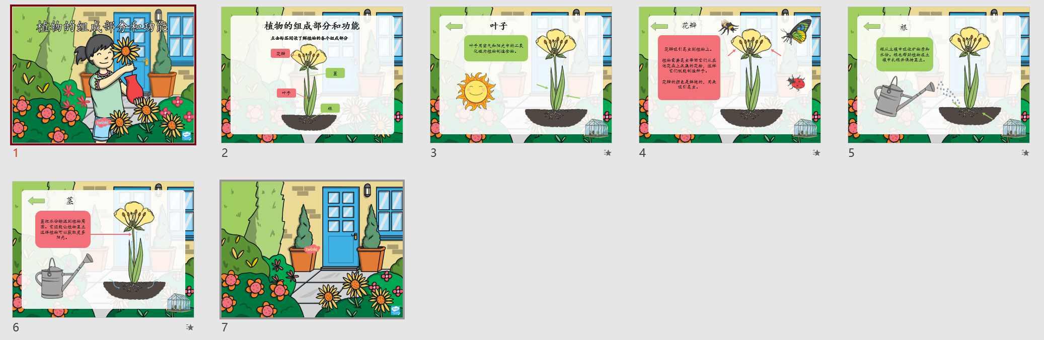 Twinkl-小学高年级-科学-植物的组成部分